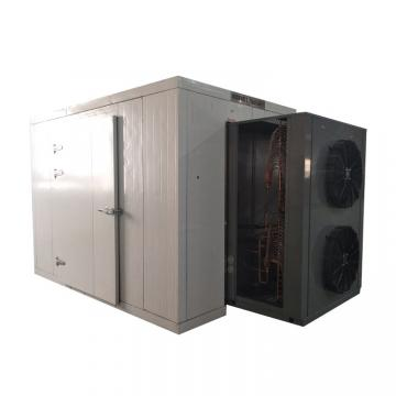 Drying Equipment of Fruit and Vegetables Cherry Tomato Dryer