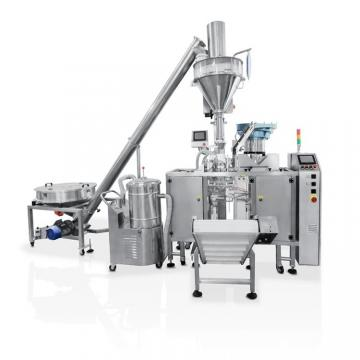 Automatic Horizontal Doypack Pouch Cookie Condiment Packaging Machine